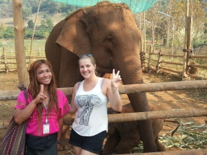 Happy Elephant Home- with Omo